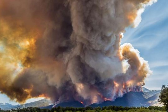 western_us_forest_fires
