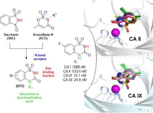 Saccharin derivatives give cancer cells a not-so-sweet surprise